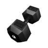 PRO HEX Rubber Dumbbell 37.5 Kg Hexagonal Dumbbells Lacertosus