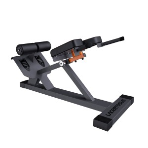 Hyperextension Club Line Lacertosus® Isotonic Fitness equipment