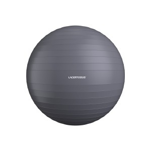Swiss Ball/ Gym Ball 65 cm FitBalls - Swiss Balls Lacertosus
