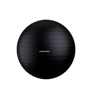 Swiss Ball/ Gym Ball 75 cm FitBalls - Swiss Balls Lacertosus